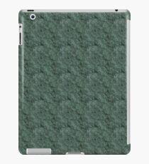 Chiseled Gray Green Rock iPad Case/Skin