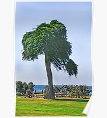 Under The Pic-nic Tree Poster