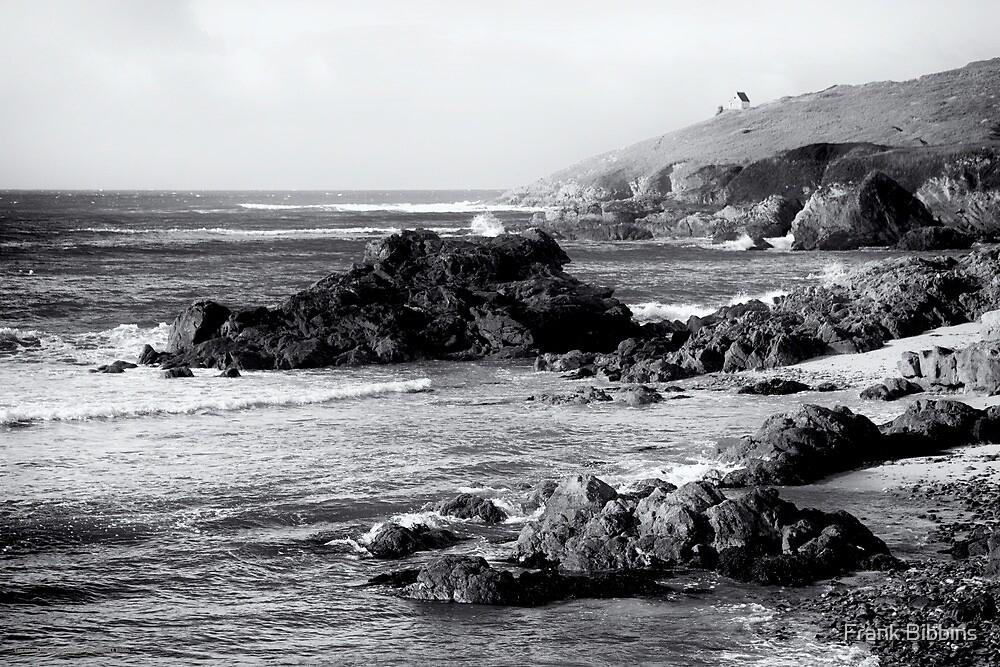 Savage Coast, Audierne  2012 by Frank Bibbins