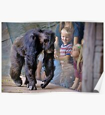 Children at the Zoo Poster