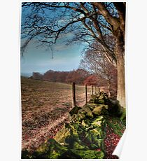 Chevin Dry Stone Wall #2  Poster