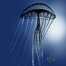 Jellyfish Silhouette drawn on the iPad by Ray Cassel