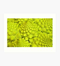 Romanesco Cauliflower Macro Art Print
