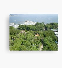filled with greens kamakura Canvas Print
