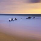 Sunlit Dicky - Caloundra by Maxwell Campbell