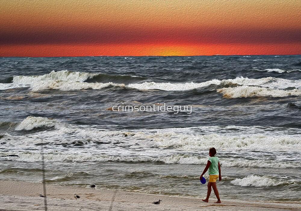 A Walk On The Beach by Mike Pesseackey (crimsontideguy)