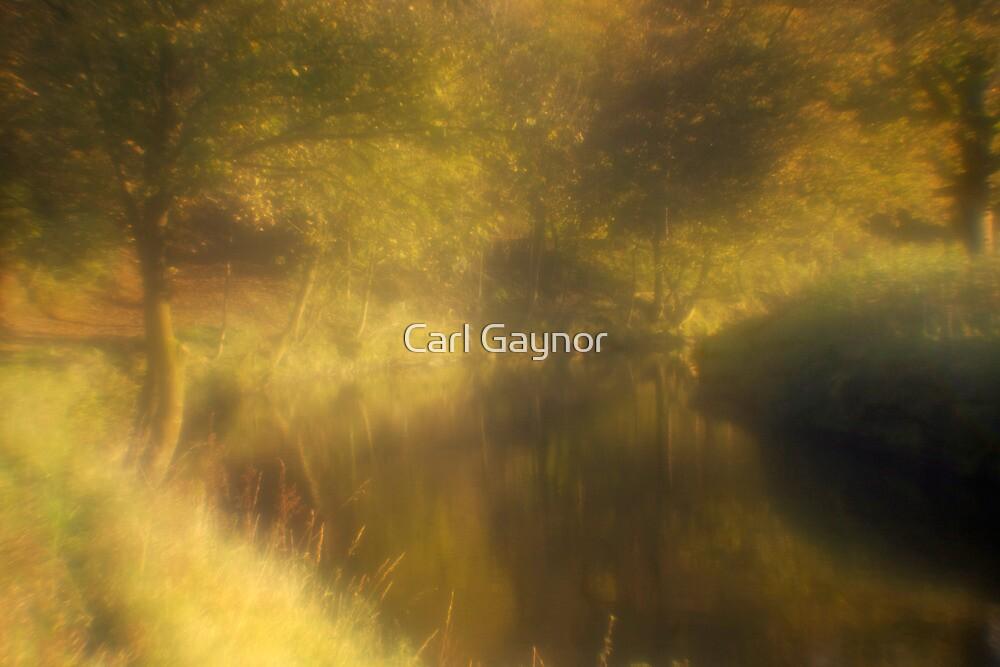Autumn Rush  by Carl Gaynor