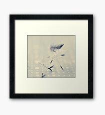 delicate balance Framed Print