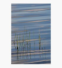 Dancing on Water Photographic Print