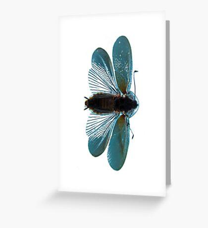 Blue Moth Greeting Card