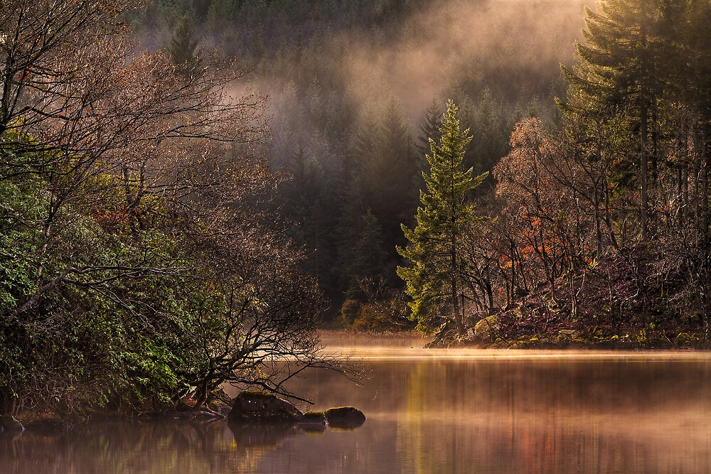 Misty Tranquility (2) by Karl Williams