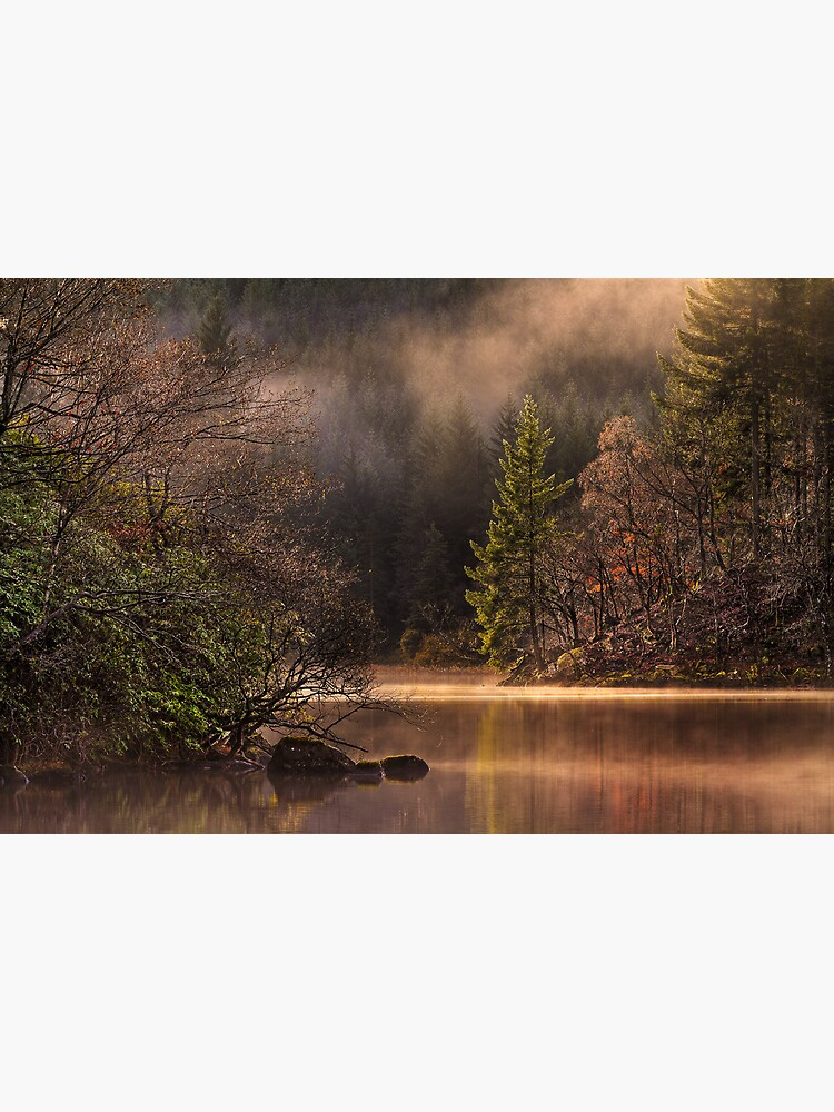 Misty Tranquility (2) by Shuggie