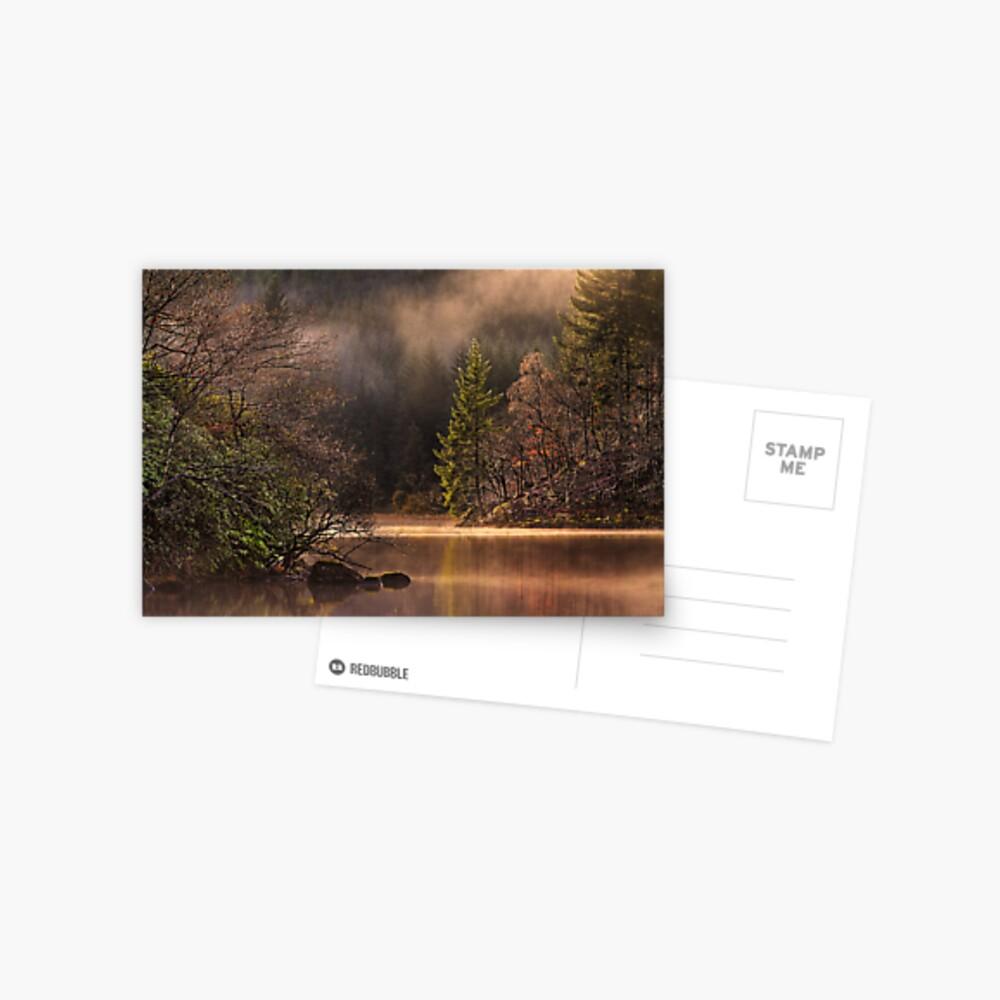 Misty Tranquility (2) Postcard