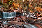 Autumn Scene at Delaware Falls by Gene Walls