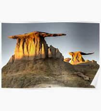 Bisti/De-Na-Zin Wilderness Golden Wings Poster