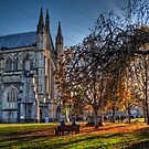 Late Autumn in the grounds of Winchester Cathedral by NeilAlderney