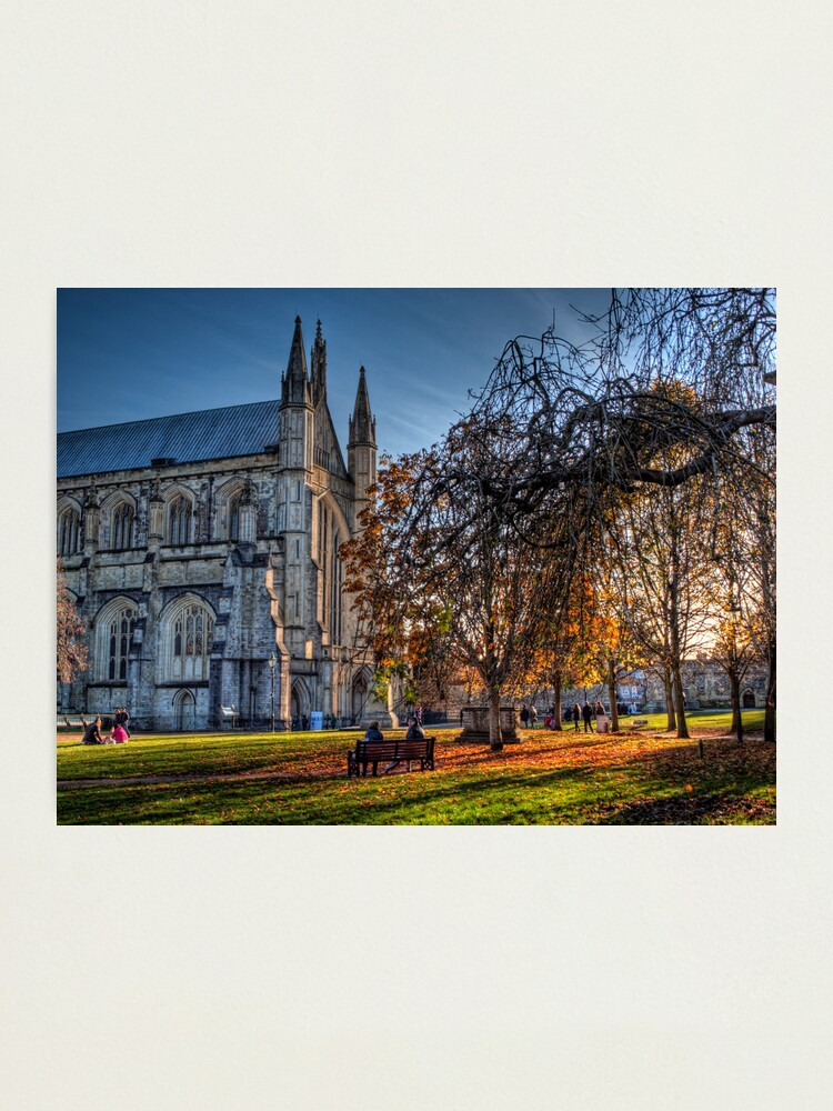 Alternate view of Late Autumn in the grounds of Winchester Cathedral Photographic Print
