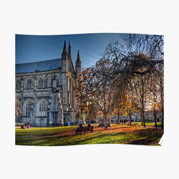 Late Autumn in the grounds of Winchester Cathedral Poster