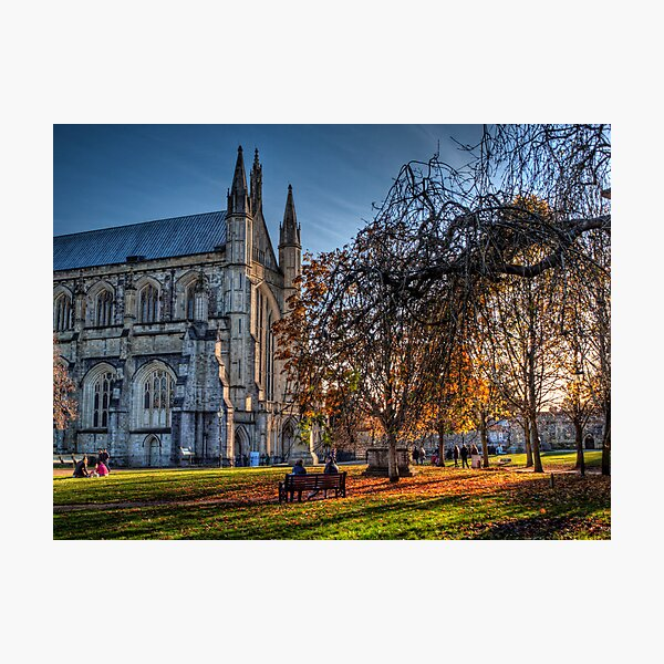 Late Autumn in the grounds of Winchester Cathedral Photographic Print