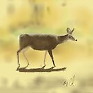 Mule Deer Sketched on an iPad by Ray Cassel