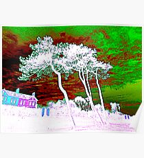 White Trees And Green Skies Poster