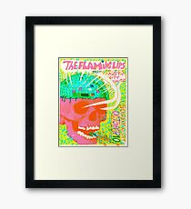 Flaming Lips Austin City Limits Framed Print
