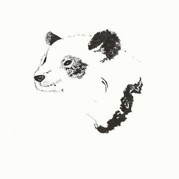 Panda by bcrotty