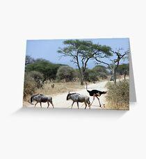 Wildlife crossing Greeting Card