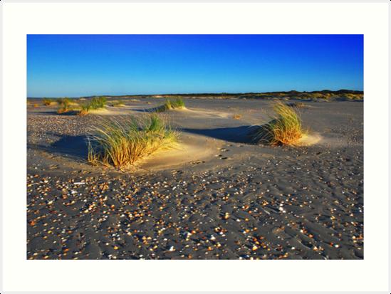 North Sea Beach 5 by Adri  Padmos