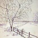 Winter field by Victoria  _Ts