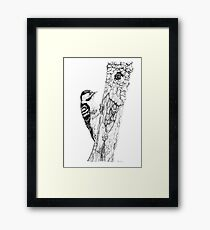 Greater Spotted Woodpecker Framed Print
