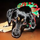 Good Girl waiting for Santa by Ticker