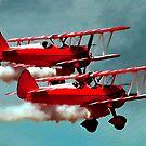 Bi-Planes by artstoreroom