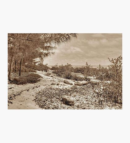 St Andrews Beach at Yamacraw on Eastern Nassau in The Bahamas Photographic Print
