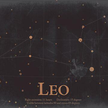 Leo by EplusC
