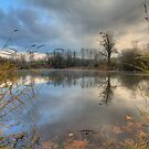 Meadowbrook Slough by Dale Lockwood