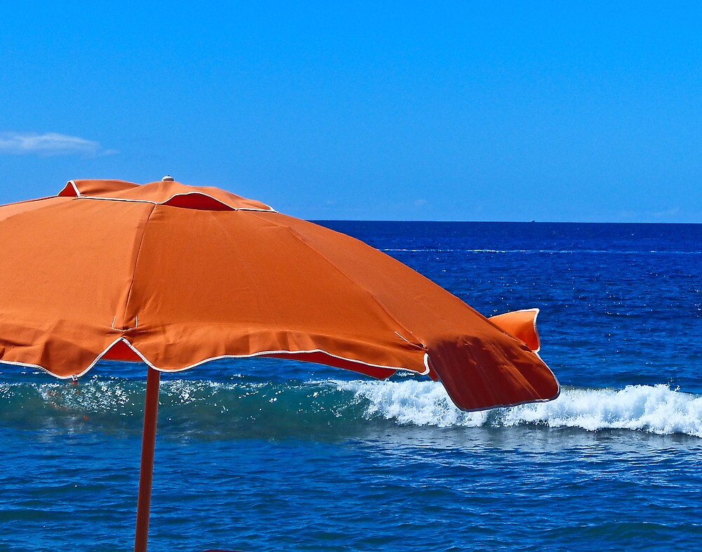 Fair seas by Linda Sparks