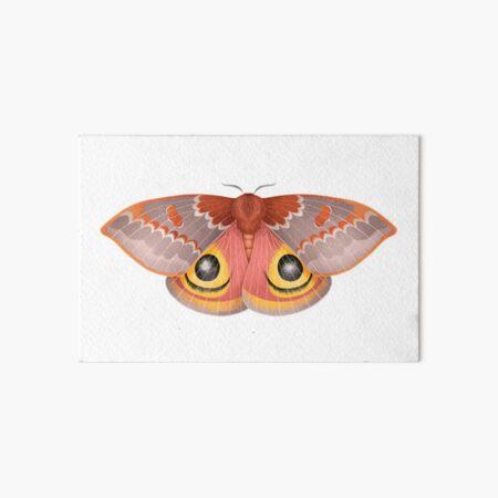 Io Moth Art Board Print