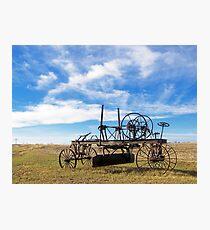 Prairie Fossil Photographic Print