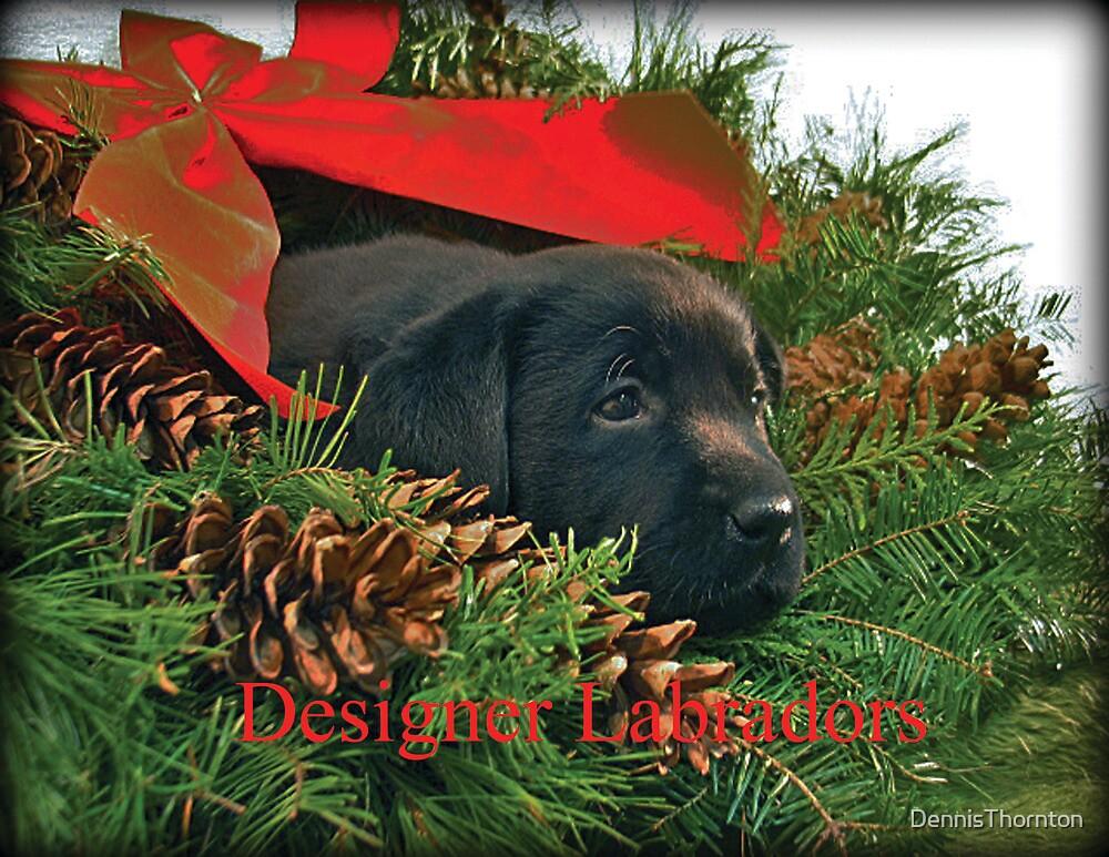 Merry Christmas! by DennisThornton
