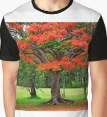Fiery Poinciana Trees Graphic T-Shirt