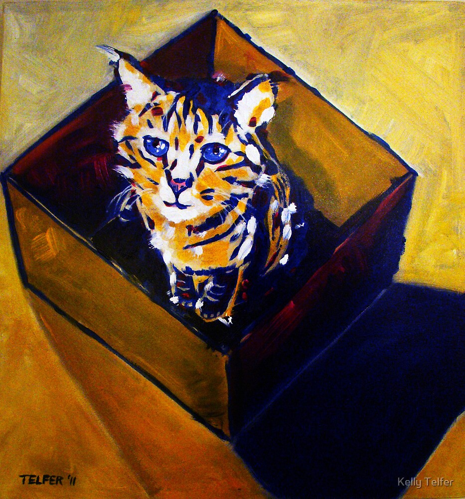 'Can't Think Out of the Box' Striped Tabby Cat  by Kelly Telfer