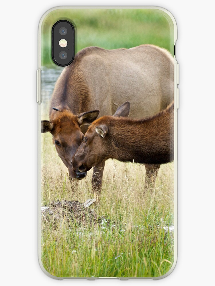 Moose Love by CherylBeck