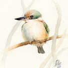 Sacred Kingfisher (Todiramphus sanctus) by Laura Grogan