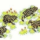 Corroboree frogs (Pseudophryne corroboree) by Laura Grogan