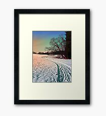 A snowy trail and some trees Framed Print