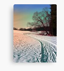 A snowy trail and some trees Canvas Print
