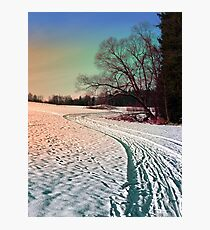 A snowy trail and some trees Photographic Print