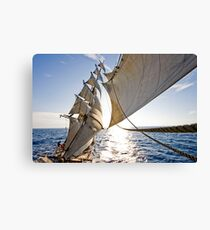 Powered by Wind Canvas Print