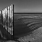 North Sea Beach in B&W by Adri  Padmos